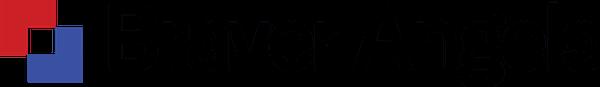 Braver Angels Logo